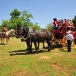 Clarksville guests ride in style thanks to the courtesy stagecoaches that shuttled people back and forth during the annual celebration on May 5. Village Life photo by Pat Dollins