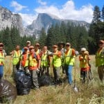 Boy Scouts with El Dorado Hills Troop 465 spent a day pulling invasive weeds on the Yosemite Valley floor. Courtesy photo