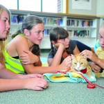 Bogey the Education Ambassador loves the attention he gets from Bengal Weekly News team members Rhiannon Gotcher, 12;  Kate Green-Jones, 12; Shani Sansone, 12; and Jessica Furtado, 13, left to right. Bogey visited Rolling Hills Middle School last week. Village Life photo by Shelly Thorene